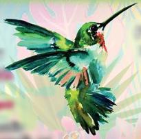 First Annual Hummingbird Award (Premio Colibrí) Winners